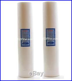 (2) Big Blue Whole House Sediment Water Filter 20 x 4.5 PP #FP25BX2