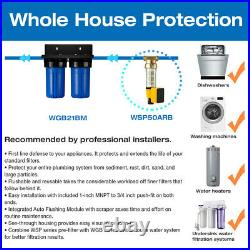 ISpring WGB21BM 2-Stage Whole House Water Filtration System with 10 x 4.5