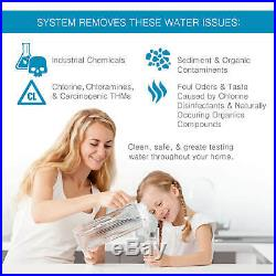 Whole House Water Filter Catalytic-GAC Blend Fleck 5600 1.5 CU-KDF85MG4
